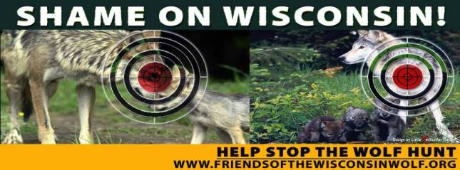 Friends of the Wisconsin Wolf billboard unveiled on I90/I94 near Wisconsin Dells.